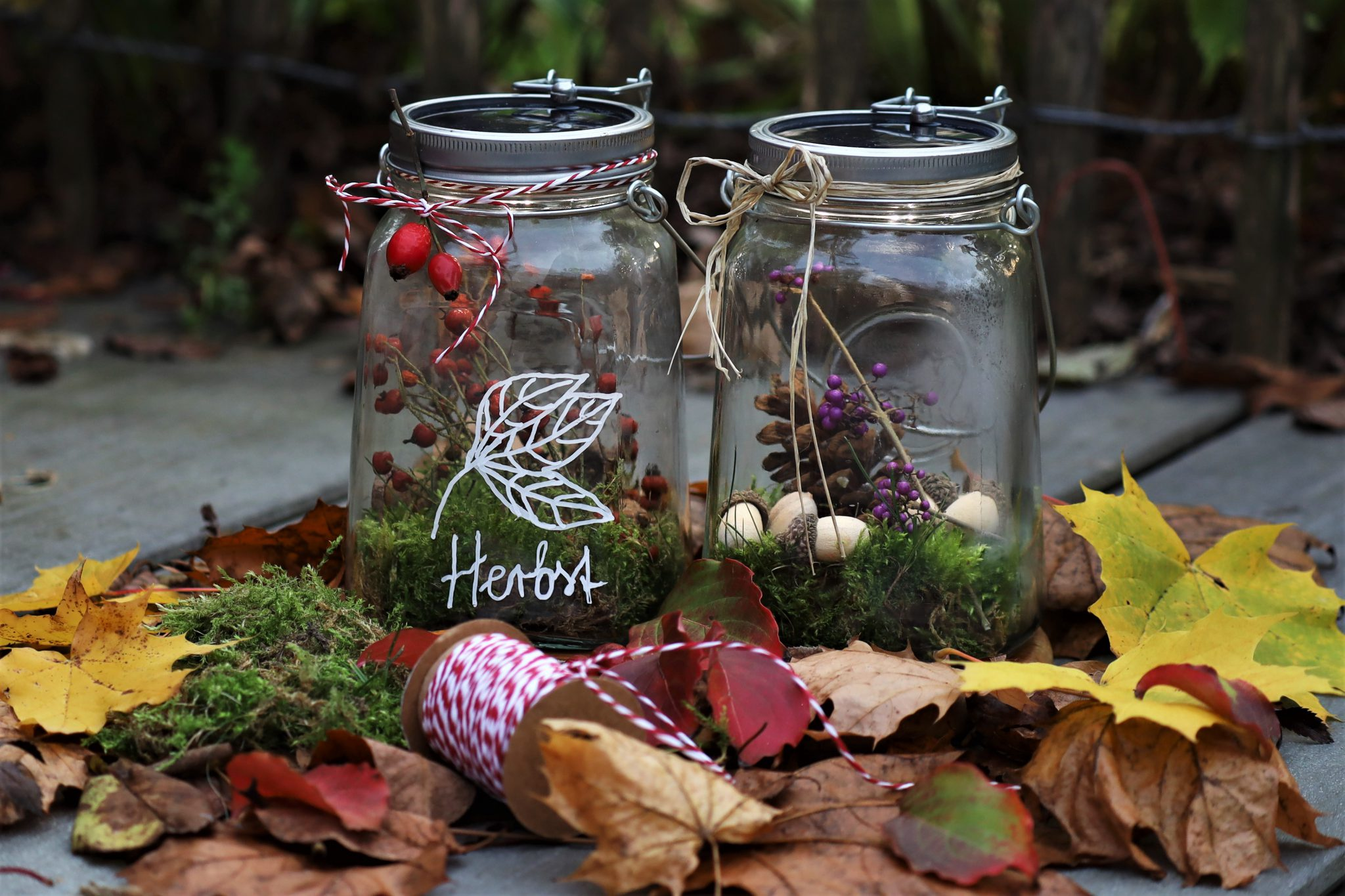 DIY Herbst im Glas   Im roten Schwedenhaus